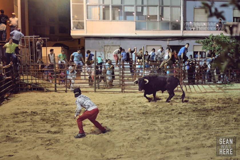 Bull Fighting. Palmela, Portugal