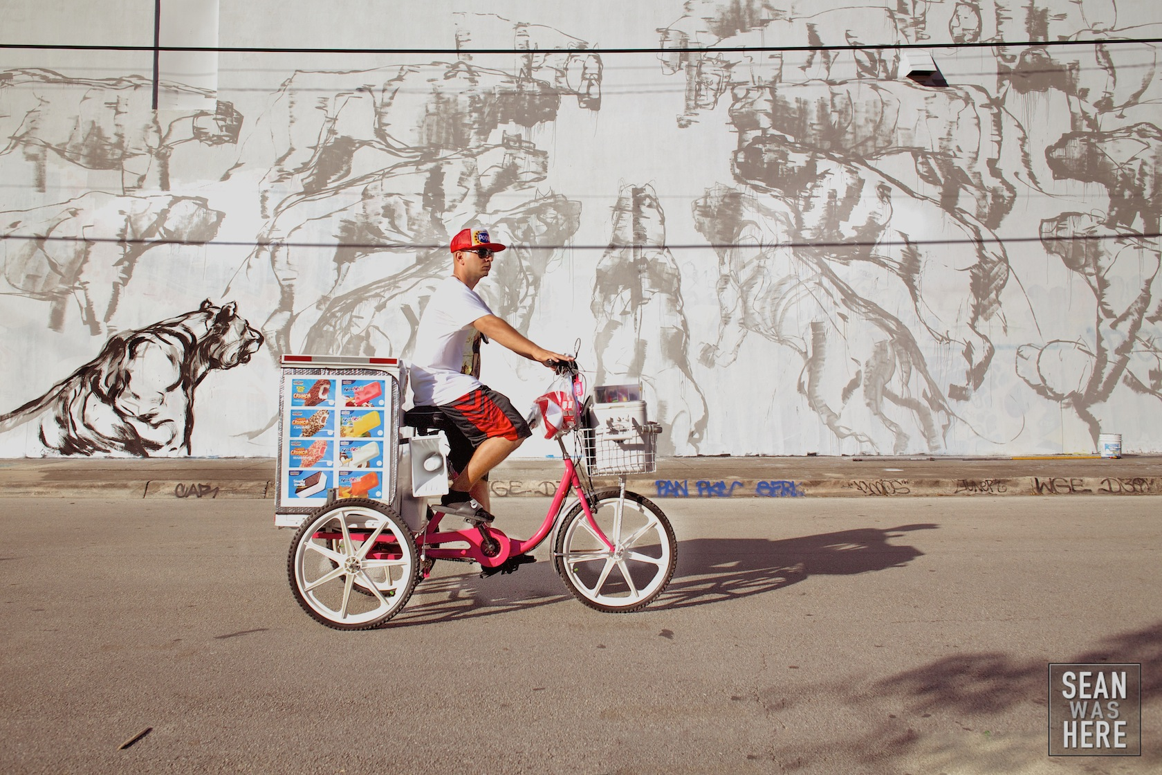 Ice Cream Bike, Wynwood Miami