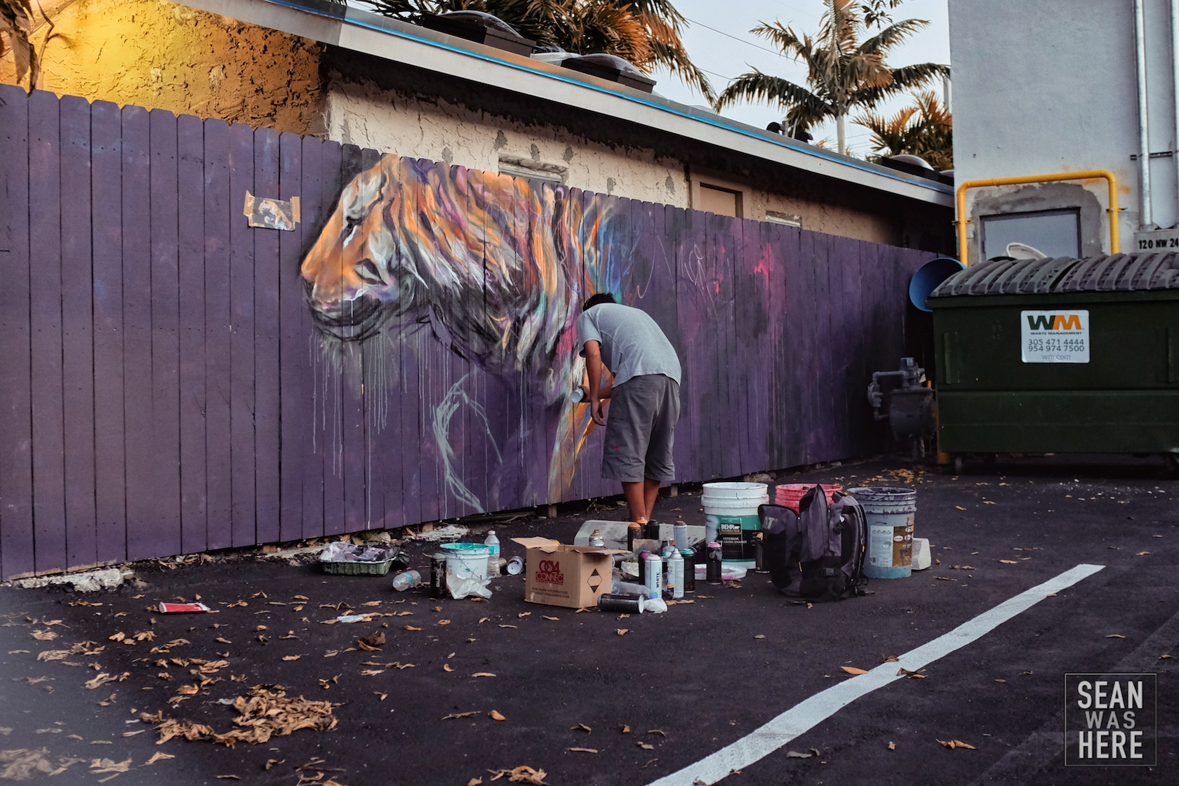 Never got this artist name! Amazing tiger though. Wynwood Miami