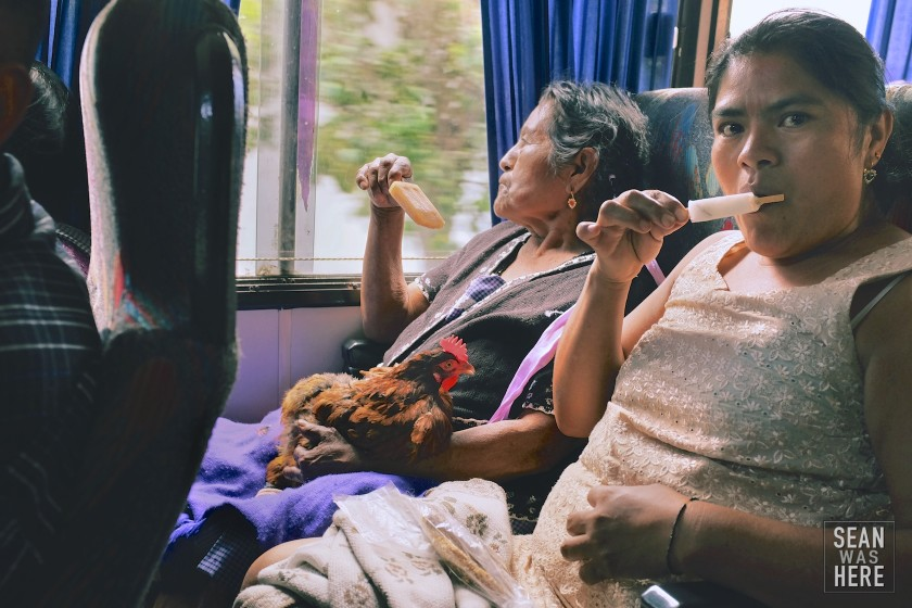 On The Bus. Oaxaca, Mexico