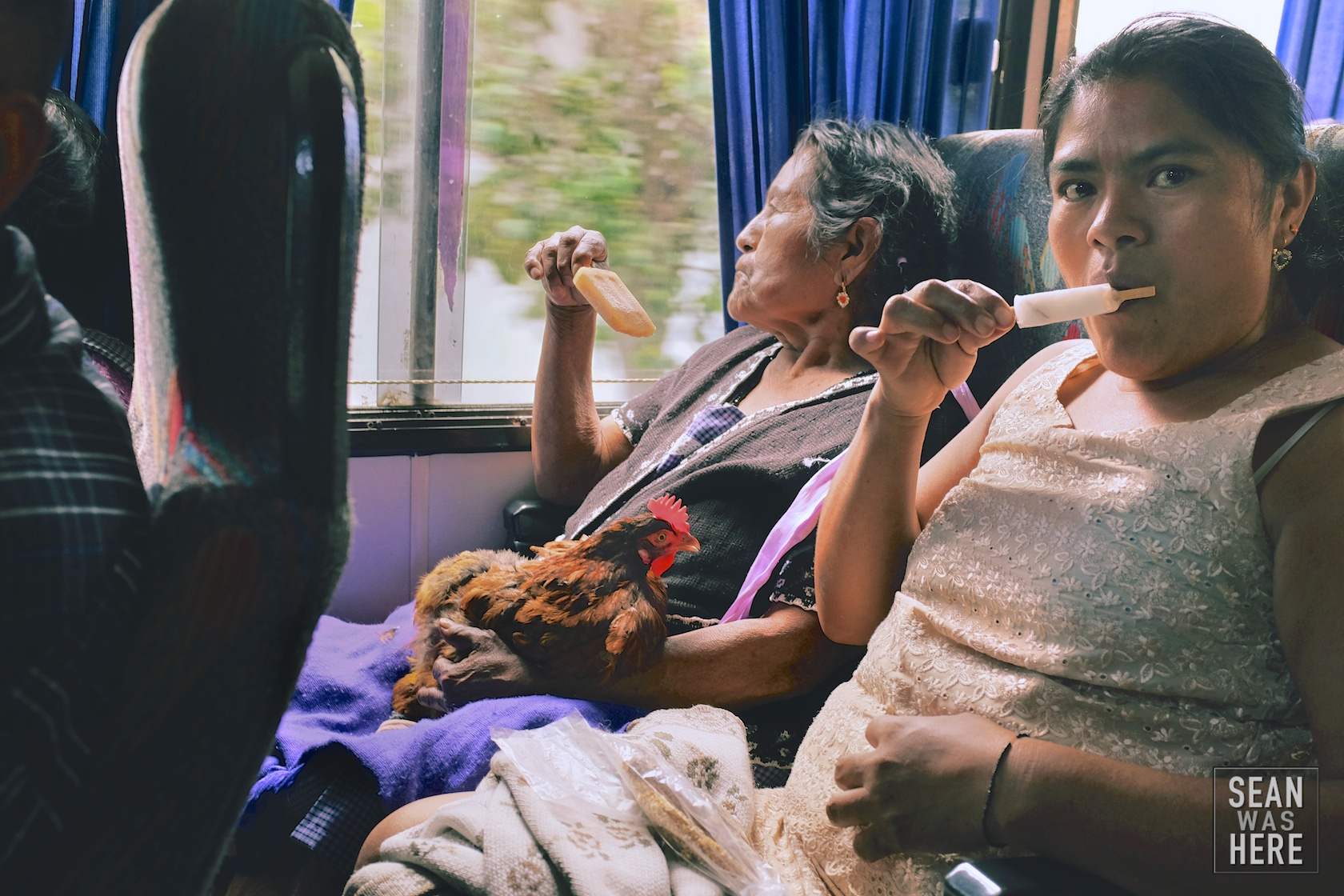 On The Bus. Oaxaca, Mexico